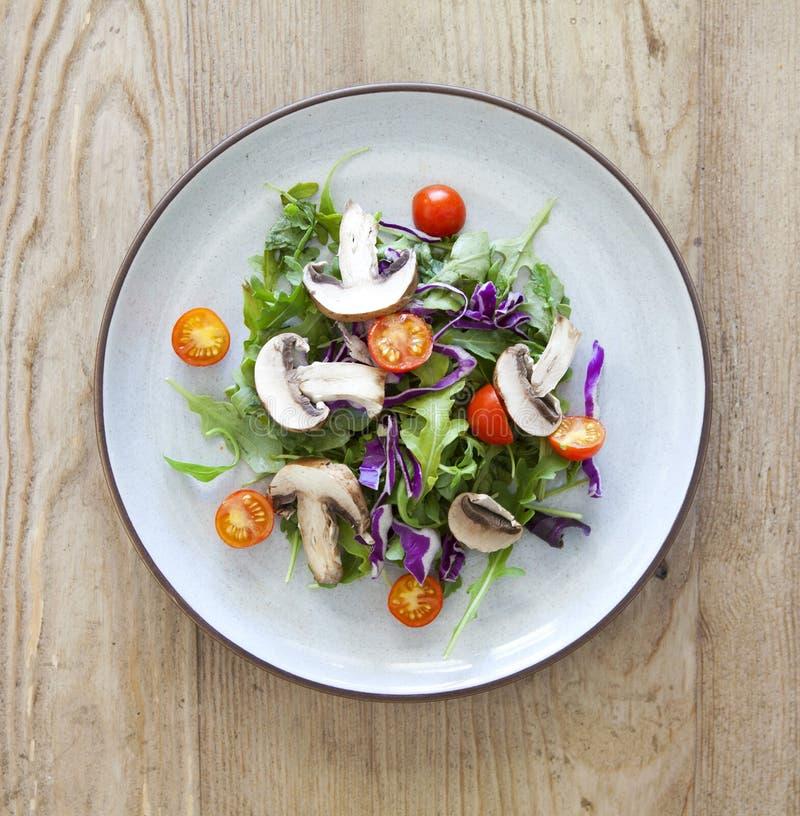 Σαλάτα κήπων με τα μανιτάρια και τις ντομάτες στοκ φωτογραφίες