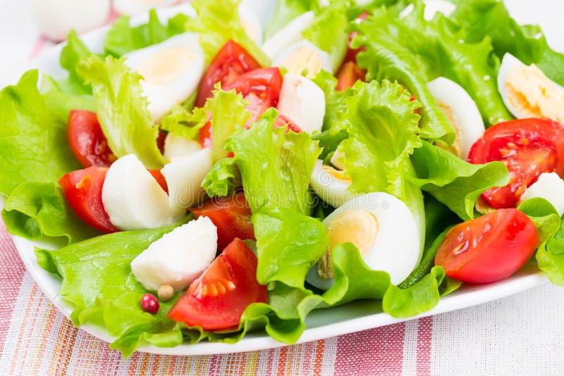 Σαλάτα με τις ντομάτες, τη μοτσαρέλα και τα αυγά στοκ φωτογραφίες