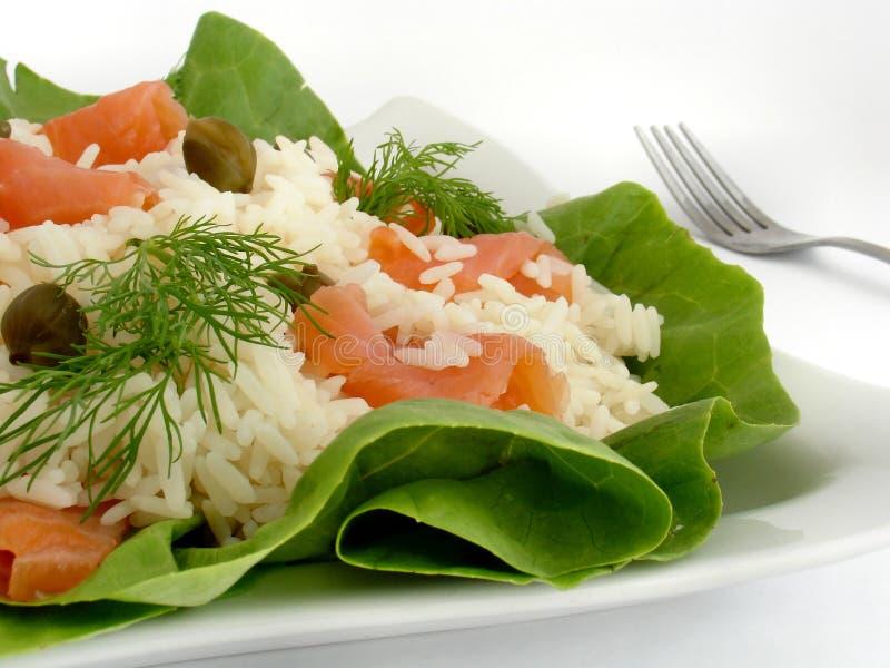 σαλάτα σουηδικά στοκ εικόνα με δικαίωμα ελεύθερης χρήσης