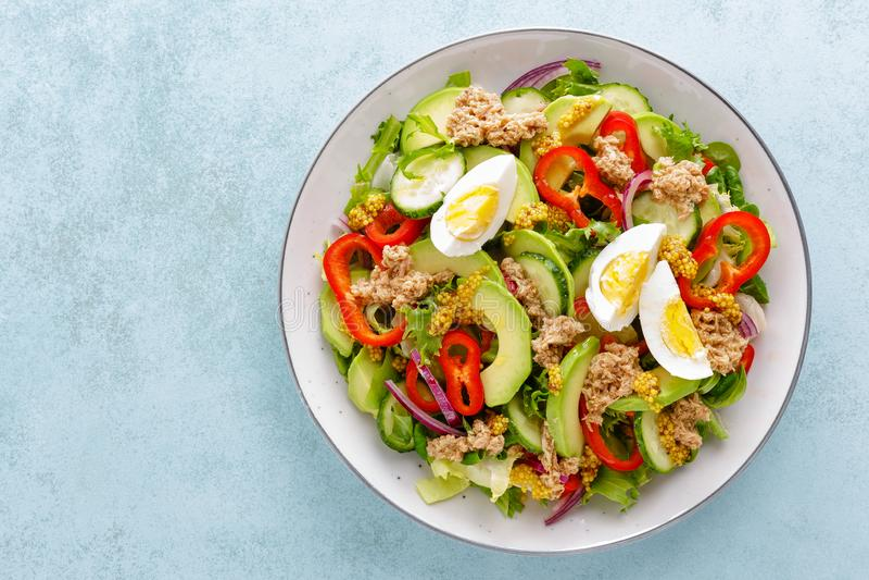 Σαλάτα τόνου με το βρασμένα αυγό και τα φρέσκα λαχανικά τρόφιμα σιτηρεσίου υγιή casserole ελληνικά κομματιασμένα κρέας λαχανικά m στοκ φωτογραφίες