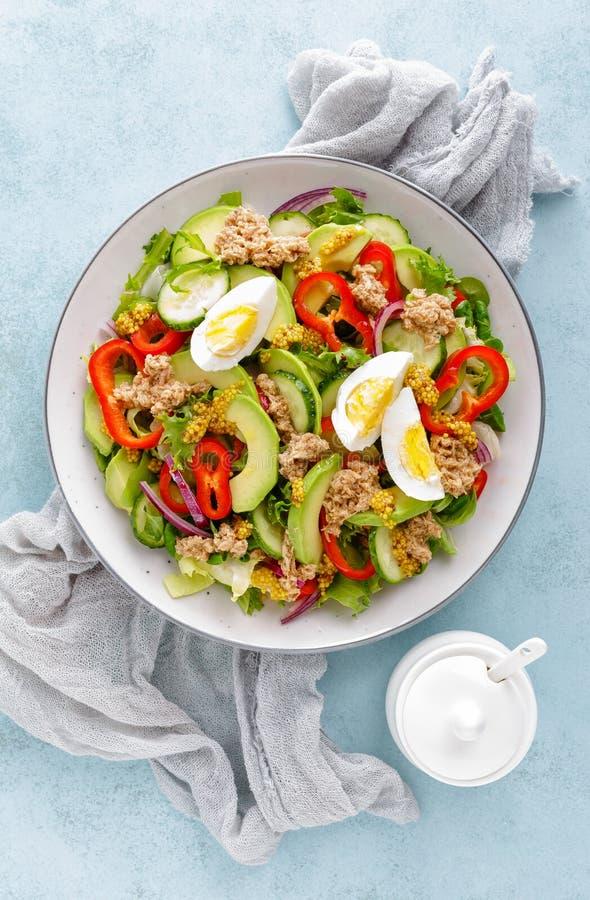 Σαλάτα τόνου με το βρασμένα αυγό και τα φρέσκα λαχανικά τρόφιμα σιτηρεσίου υγιή casserole ελληνικά κομματιασμένα κρέας λαχανικά m στοκ φωτογραφία με δικαίωμα ελεύθερης χρήσης