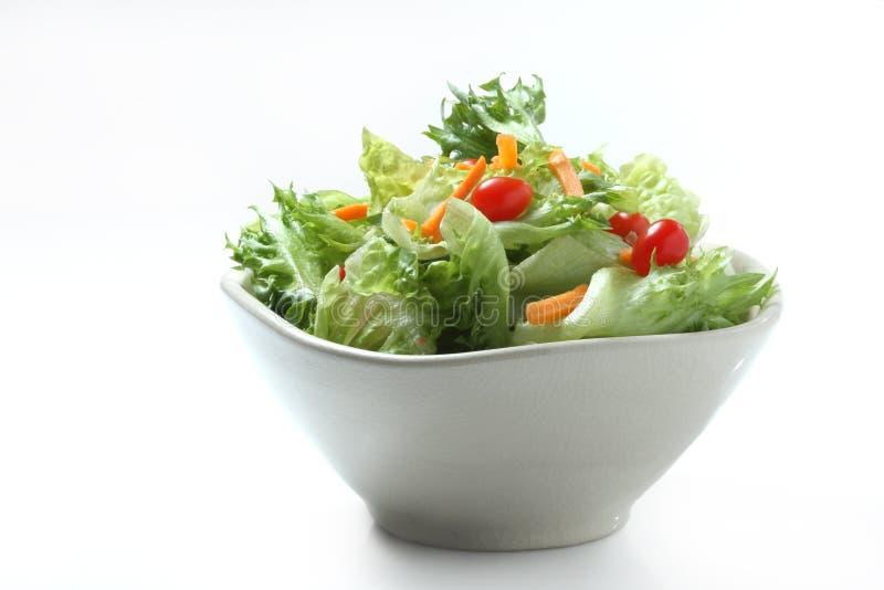 σαλάτα στοκ φωτογραφία