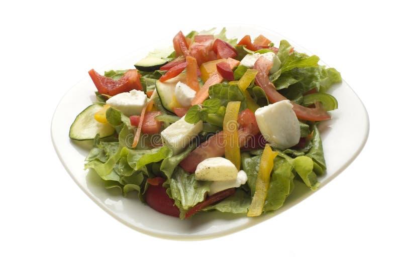 Download σαλάτα στοκ εικόνα. εικόνα από πιάτο, lunch, ύδωρ, υγιής - 1530071