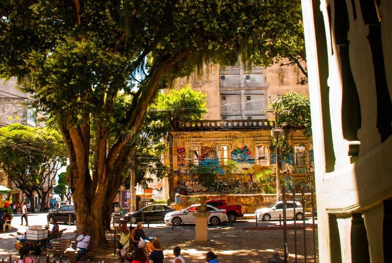 ΣΑΛΒΑΔΟΡ, BAHIA, ΒΡΑΖΙΛΙΑ: Γκράφιτι, όμορφη εικόνα στον τοίχο του σπιτιού στοκ φωτογραφία