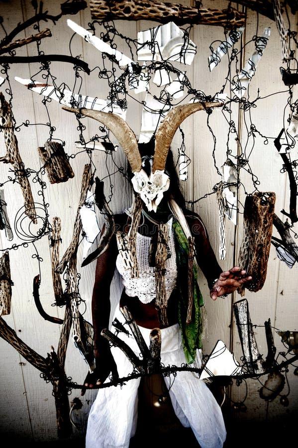 Σαμάνος γυναικών οράματος τοτέμ στοκ εικόνες