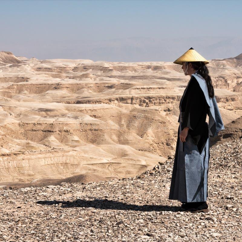 Σαμουράι σε μια έρημο στοκ φωτογραφίες