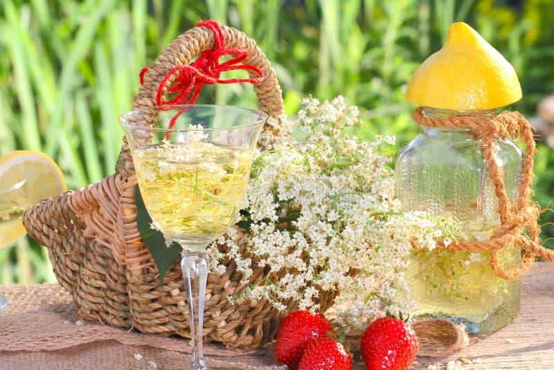 Σαμπάνια και φράουλες Elderflower στοκ εικόνες με δικαίωμα ελεύθερης χρήσης