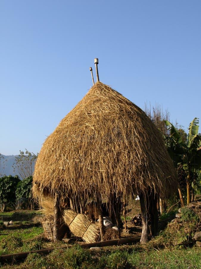 Σανός αχύρου στο Νεπάλ στοκ εικόνες με δικαίωμα ελεύθερης χρήσης