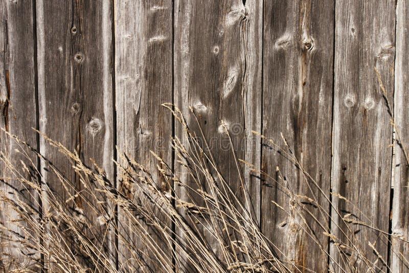 Σανός, barnboards, υπόβαθρο στοκ εικόνες