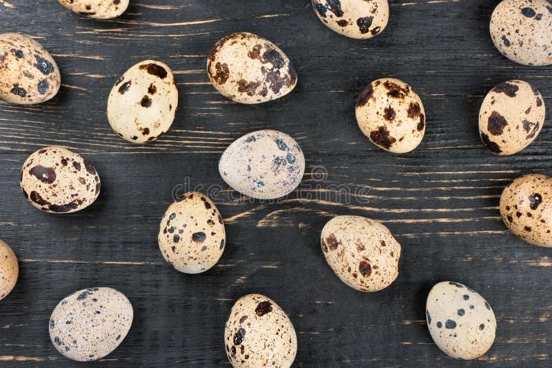 σαν αυγά ανασκόπησης πολλές νησοπέρδικες στοκ εικόνες με δικαίωμα ελεύθερης χρήσης