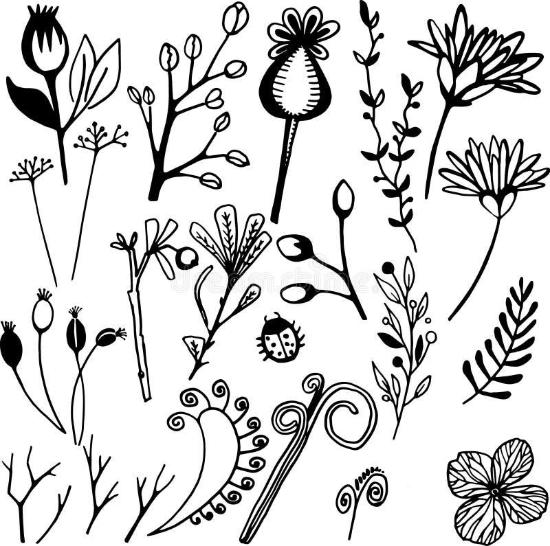 σαν χρώματος σχεδίου vectorized επιθυμία κυλίνδρων στοιχείων floral εσείς στοκ φωτογραφίες με δικαίωμα ελεύθερης χρήσης