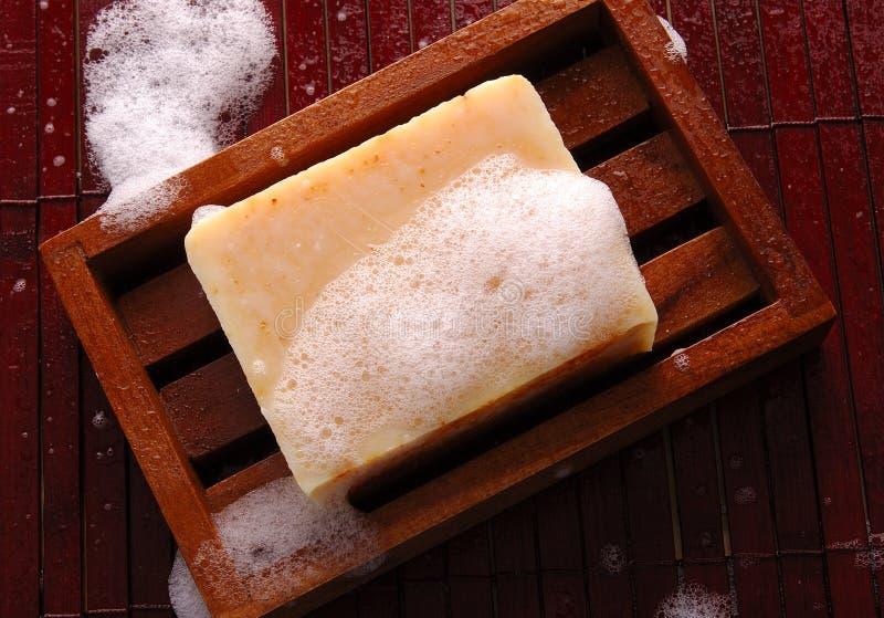 σαπούνι ντους στοκ φωτογραφία με δικαίωμα ελεύθερης χρήσης