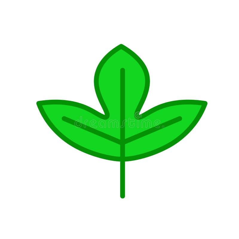Σασαφράδων φύλλων σημάδι και σύμβολο εικονιδίων διανυσματικό που απομονώνονται στη λευκιά ΤΣΕ διανυσματική απεικόνιση
