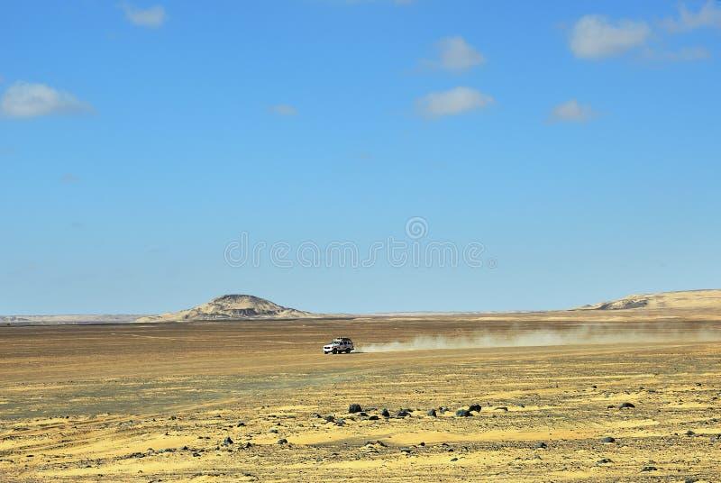 Σαφάρι ερήμων Σαχάρας στοκ εικόνες