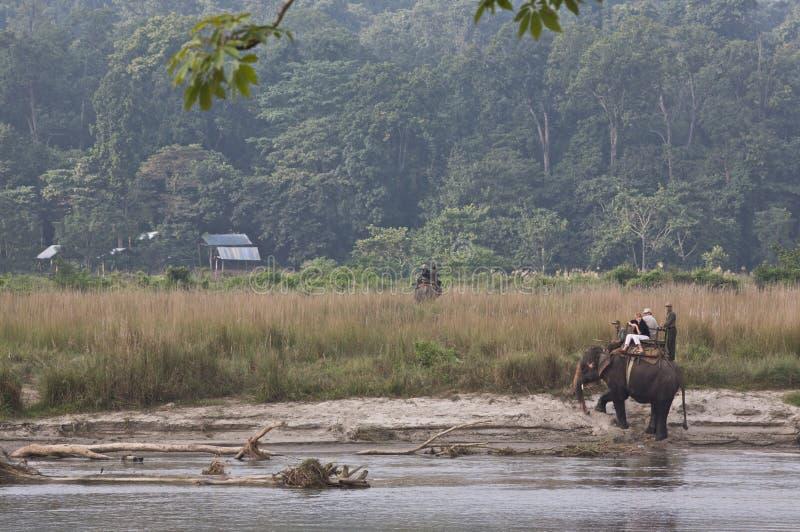 σαφάρι του Νεπάλ στοκ εικόνα με δικαίωμα ελεύθερης χρήσης