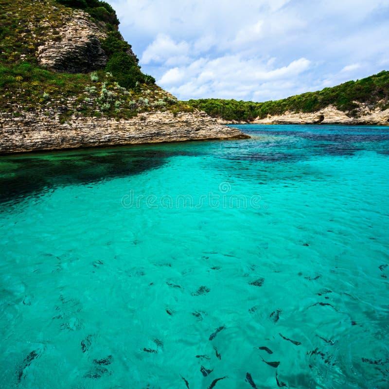 Σαφές θαλάσσιο νερό σε έναν κόλπο, Κορσική στοκ εικόνα