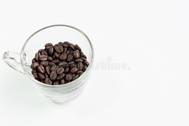 Σαφές φλυτζάνι γυαλιού με το σκοτεινό φασόλι καφέ στοκ εικόνες