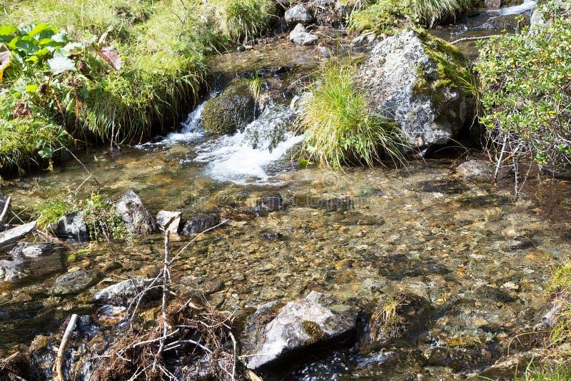 Σαφές φρέσκο νερό βουνών πέρα από τις πέτρες στοκ φωτογραφίες με δικαίωμα ελεύθερης χρήσης