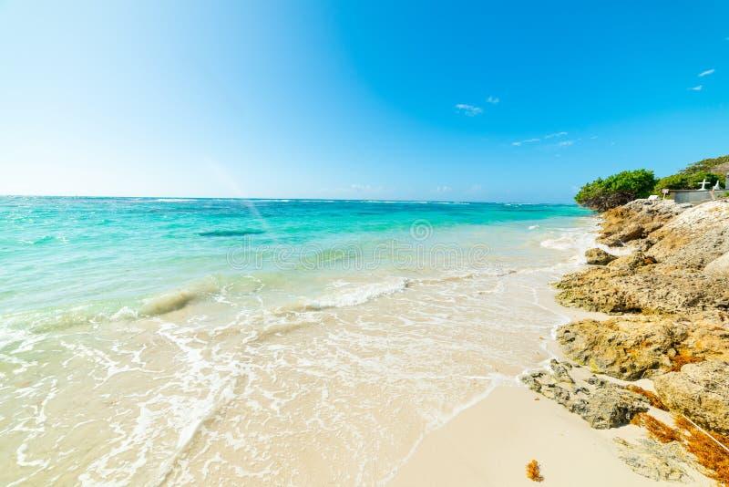 Σαφής ουρανός πέρα από την παραλία Clairs σταφίδων στη Γουαδελούπη στοκ εικόνες