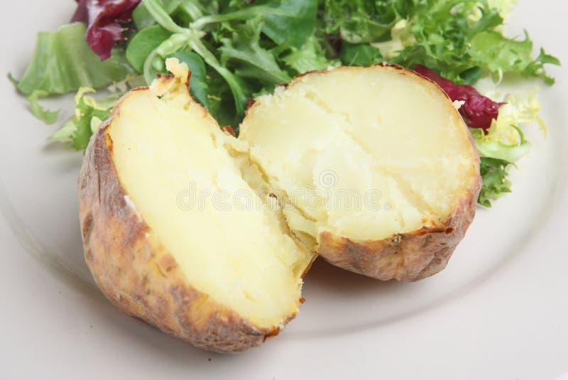 σαφής πατάτα σακακιών στοκ εικόνα