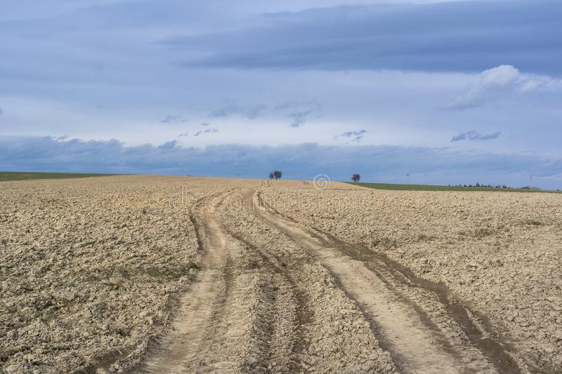 Σαφείς και επίπεδοι καλλιεργήσιμο έδαφος και τομέας στοκ εικόνες με δικαίωμα ελεύθερης χρήσης