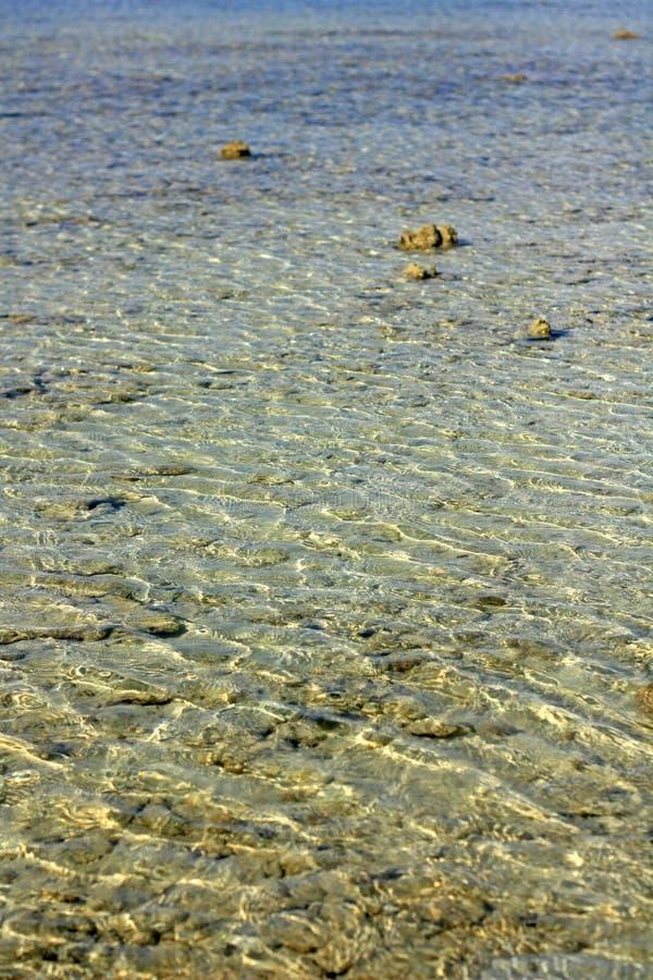 Σαφείς κυματισμοί θαλάσσιου νερού στην ακτή στοκ εικόνα με δικαίωμα ελεύθερης χρήσης