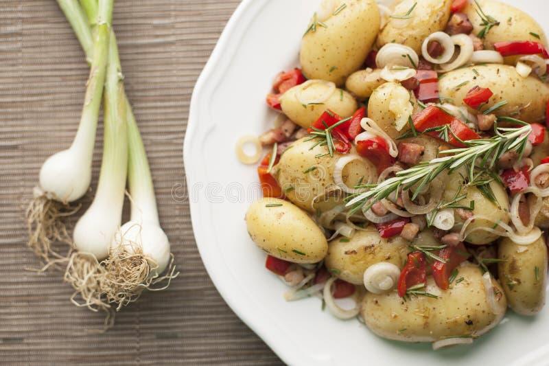 Σαλάτα καινούριων πατατών με τα κρεμμύδια άνοιξη στοκ φωτογραφία με δικαίωμα ελεύθερης χρήσης