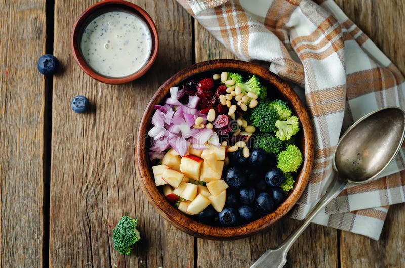 Σαλάτα μήλων βακκινίων μπρόκολου με τους ελληνικούς σπόρους παπαρουνών γιαουρτιού dre στοκ εικόνες με δικαίωμα ελεύθερης χρήσης