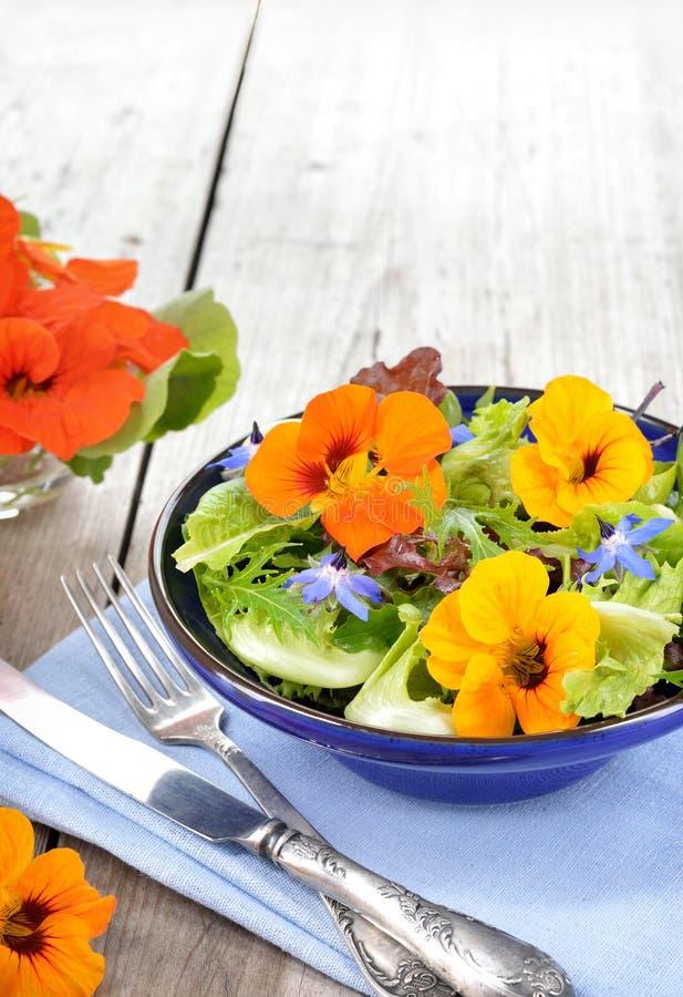 Σαλάτα με εδώδιμο nasturtium λουλουδιών, μποράγκο στοκ εικόνες