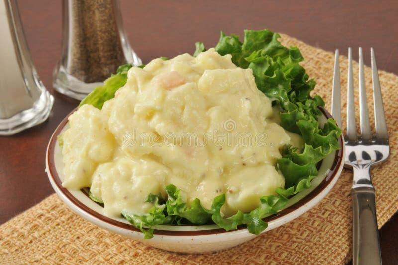 Σαλάτα πατατών μουστάρδας στοκ εικόνες με δικαίωμα ελεύθερης χρήσης