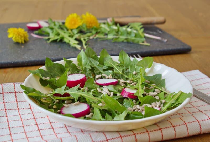 Σαλάτα που γίνεται από τα φύλλα της πικραλίδας, των σπόρων ηλίανθων και του ραδικιού στοκ φωτογραφία με δικαίωμα ελεύθερης χρήσης