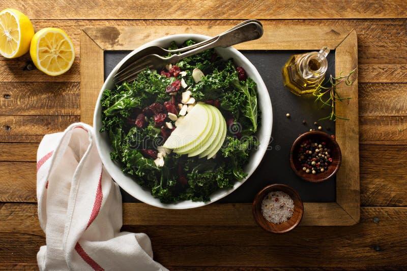 Σαλάτα του Kale με το ξηρά το βακκίνιο και το μήλο στοκ εικόνα