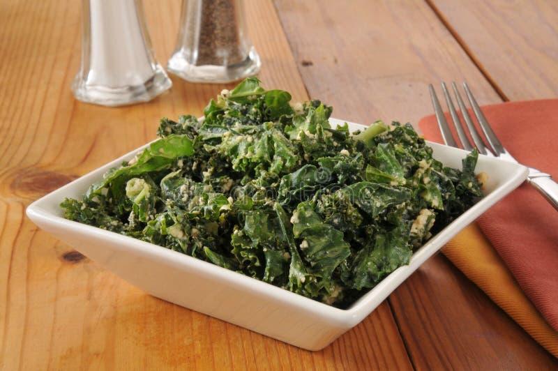 Σαλάτα του Kale στοκ εικόνες με δικαίωμα ελεύθερης χρήσης