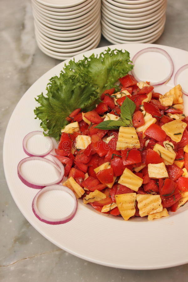 Σαλάτα τυριών ντοματών στοκ φωτογραφίες με δικαίωμα ελεύθερης χρήσης