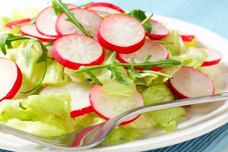 Σαλάτα φρέσκων λαχανικών στοκ φωτογραφίες