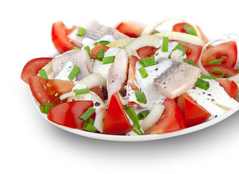 Σαλάτα ψαριών με τη σάλτσα και την ντομάτα κρέμας στοκ εικόνα με δικαίωμα ελεύθερης χρήσης