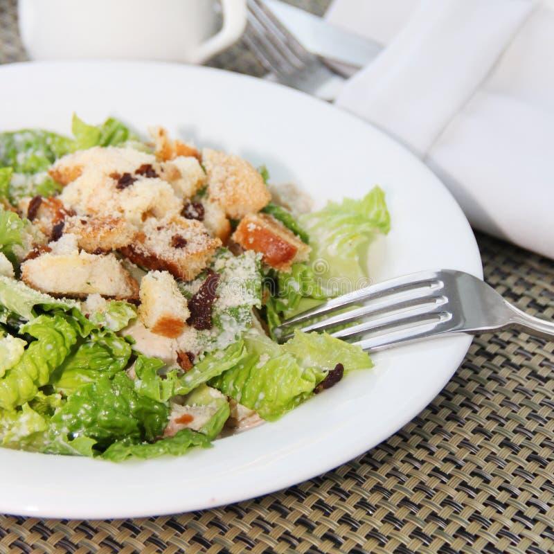 Σαλάτα Caesar με τα πράσινα και το κοτόπουλο στοκ φωτογραφία με δικαίωμα ελεύθερης χρήσης
