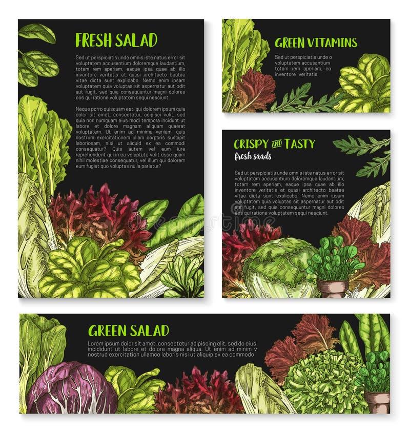Σαλάτες και φυλλώδεις αφίσες προτύπων μαρουλιού διανυσματικές διανυσματική απεικόνιση