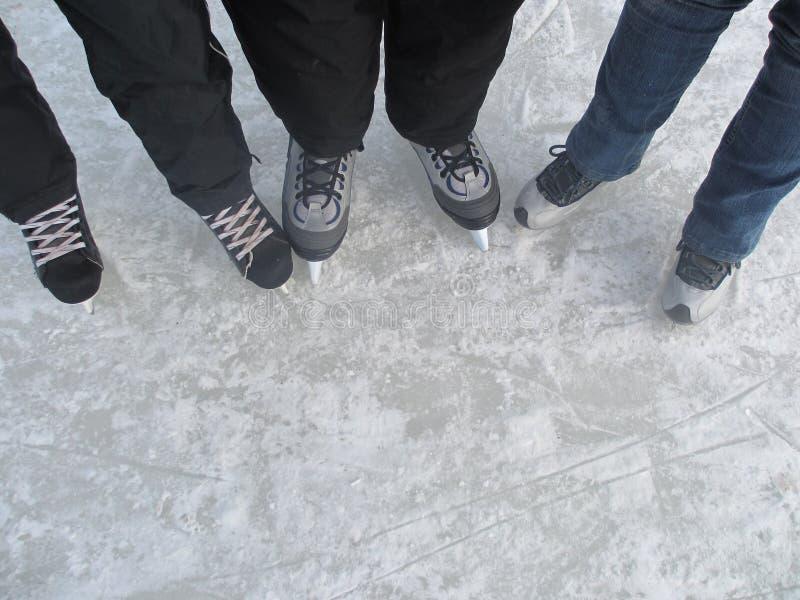 Σαλάχια πάγου στοκ φωτογραφία με δικαίωμα ελεύθερης χρήσης