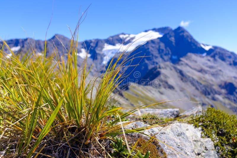 Σειρά βουνών γύρω από το πέρασμα Arthurs στοκ εικόνα