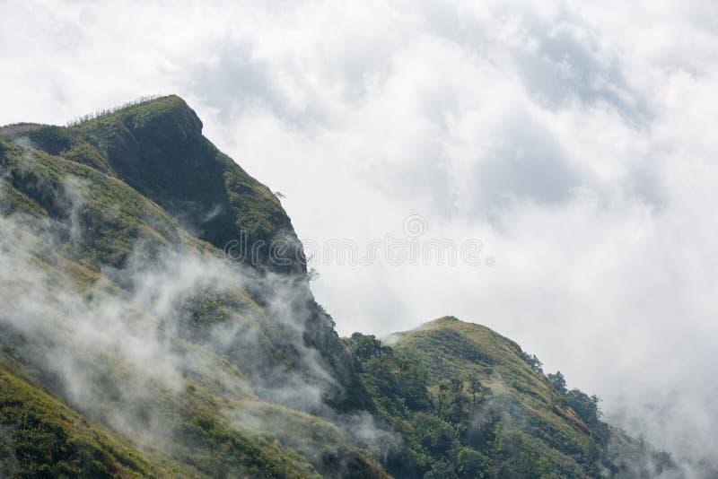 Σειρά βουνών τροπικών δασών με την υδρονέφωση πρωινού στοκ φωτογραφίες με δικαίωμα ελεύθερης χρήσης