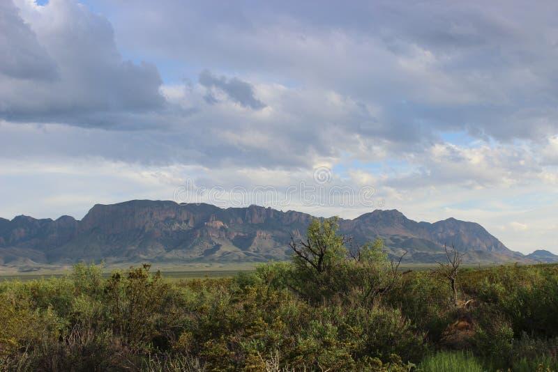 Σειρά βουνών Chisos στο μεγάλο εθνικό πάρκο κάμψεων στοκ φωτογραφίες