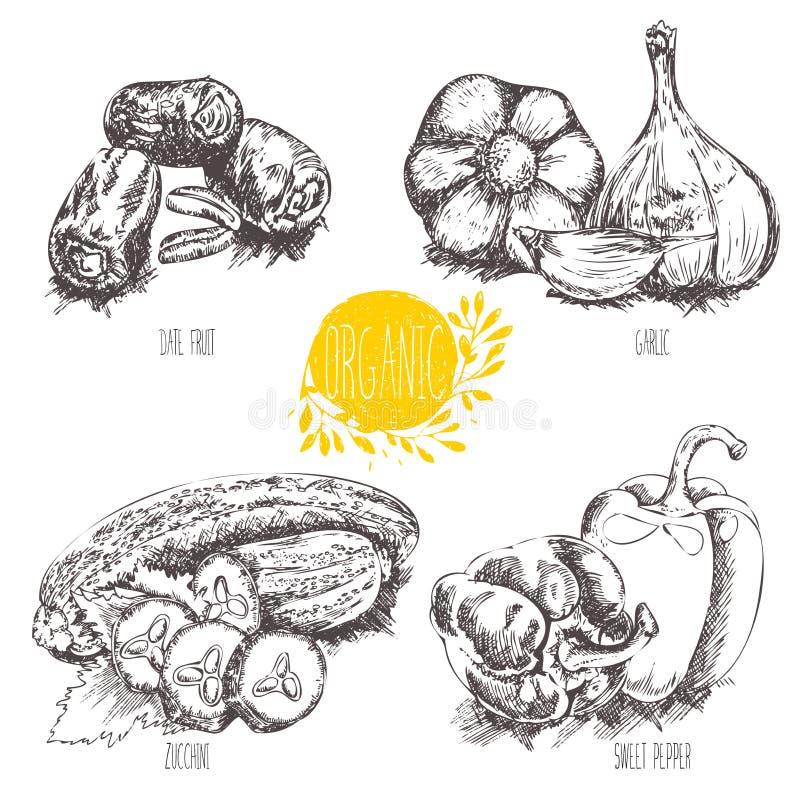 Σειρά - διανυσματικά φρούτα, λαχανικά και καρυκεύματα Συλλογή των hand-drawn οργανικών λαχανικών, φρούτα, τρόφιμα απεικόνιση αποθεμάτων
