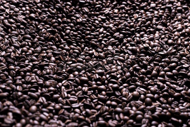 Σειρά καφέ: Υπόβαθρο φασολιών καφέ στοκ εικόνες με δικαίωμα ελεύθερης χρήσης