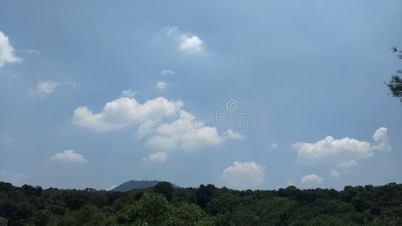 Σειρά σύννεφων στα ξύλα στοκ εικόνες με δικαίωμα ελεύθερης χρήσης