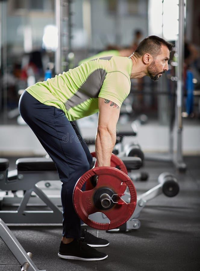Σειρά Barbell, πλάτη workout στοκ φωτογραφία