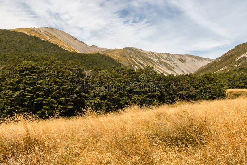 Σειρά Travers στο εθνικό πάρκο λιμνών του Nelson στοκ εικόνες
