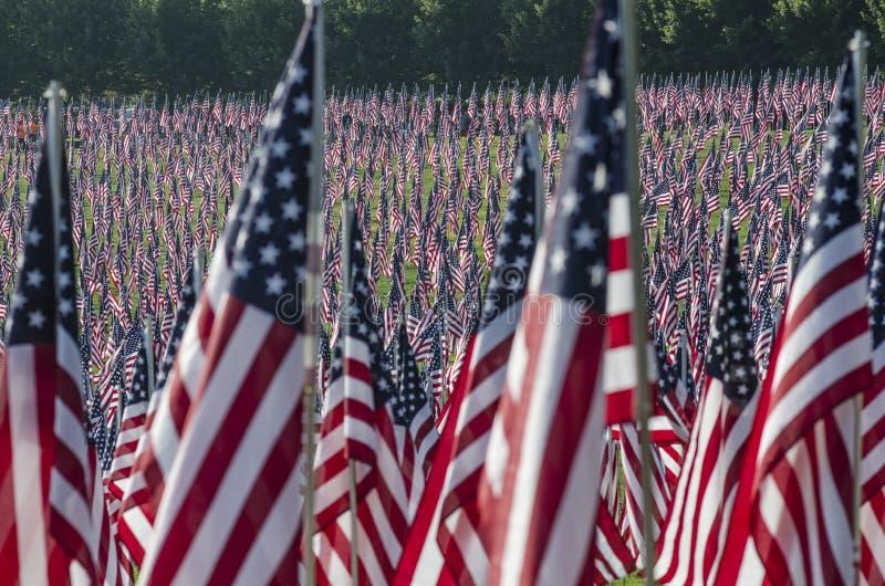 σειρές αμερικανικών σημα&i στοκ εικόνα με δικαίωμα ελεύθερης χρήσης