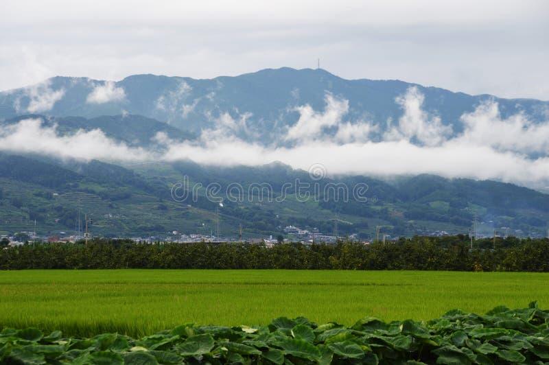 Σειρές βουνών της Misty στοκ φωτογραφία με δικαίωμα ελεύθερης χρήσης