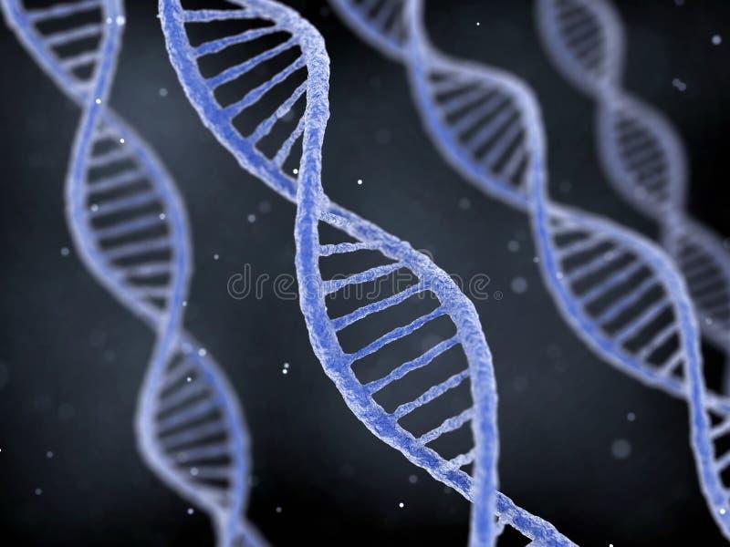 Σειρές DNA στο σκοτεινό υπόβαθρο στοκ εικόνες